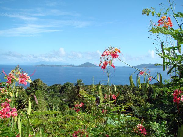 photo caraibes plus prcisment la guadeloupe ile en ile des saintes aux antilles  l'oppos de la mtropol, en bord de mer pour les vacances destination actualit le monde