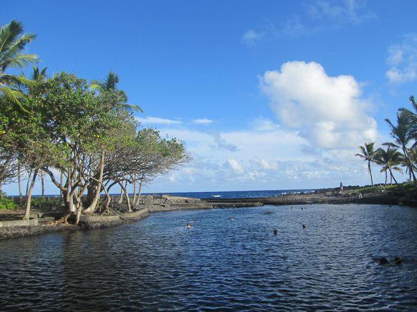 hawaii-D4 0312