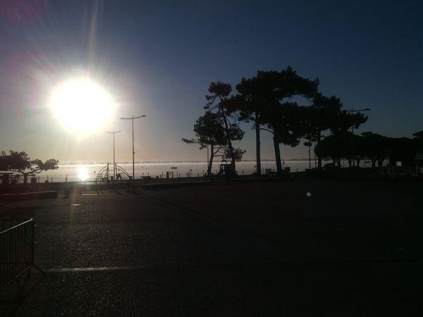 Foggy-Morning-Lake.jpg