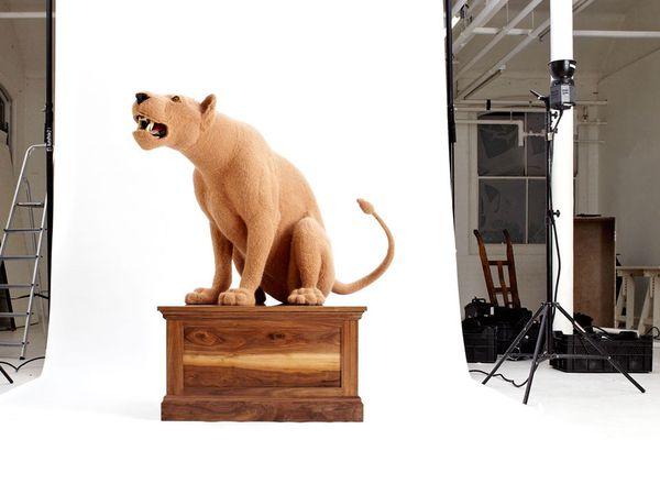 Studio-Lioness