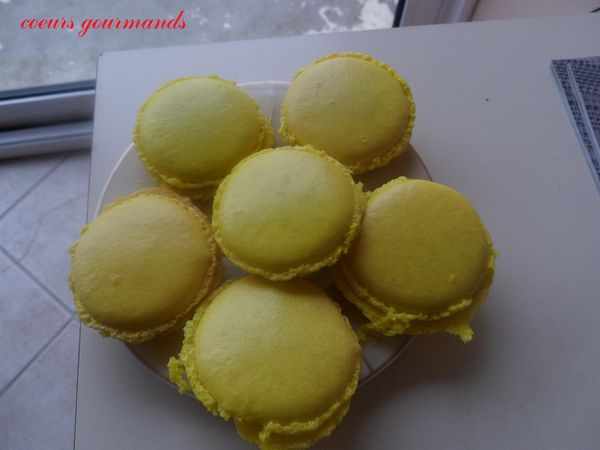 macarons-chocolat-feve-tonka.JPG