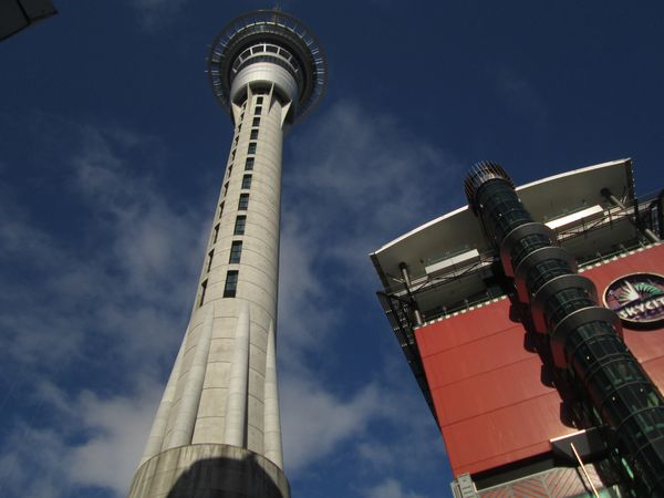 5.Auckland 01