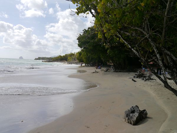Martinique 2012 053