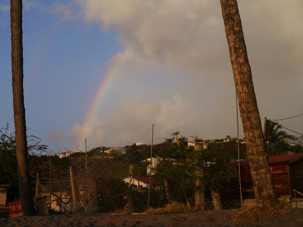 Martinique 2012 390