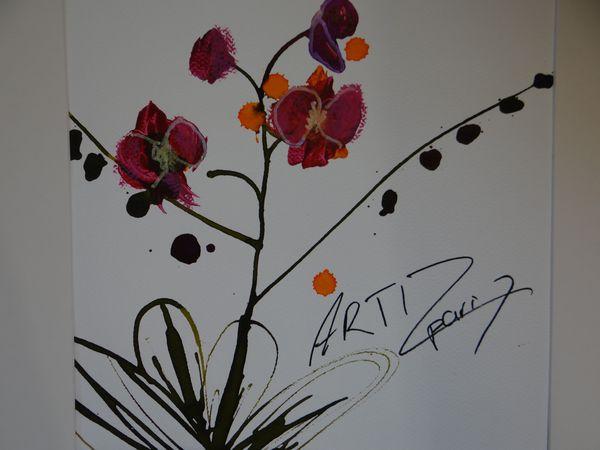 Pensée d'orchidée