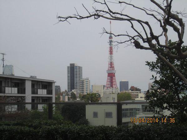 199 photo4