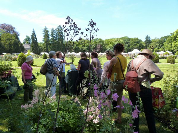 journees-de-la-rose-chaalis---juin-2014---stand-d-copie-2.jpg