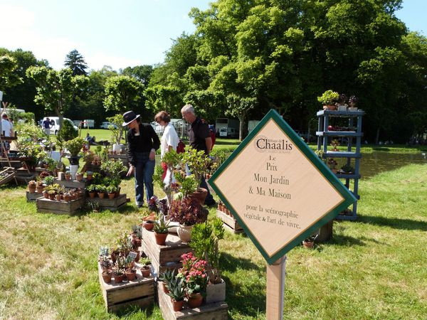 journees-de-la-rose-chaalis---juin-2014---stand-recompens.jpg