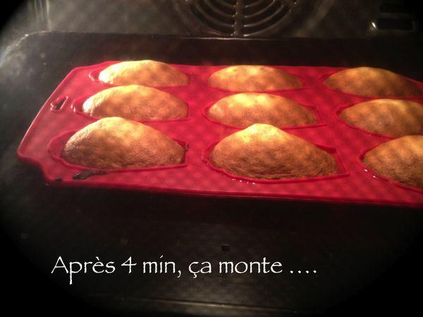 madeleines2.jpg