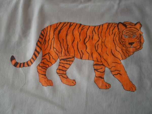 tigre 004
