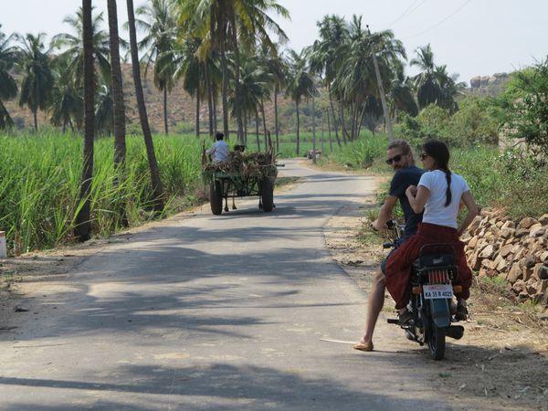 India 2452