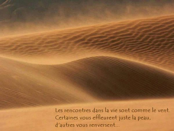 Proverbe rencontre hasard