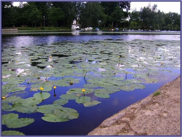 vertou--l-eau-verte-033.jpg