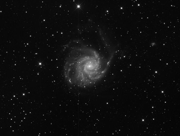 M101_First-Light-East-without-guiding_3x1200s.jpg