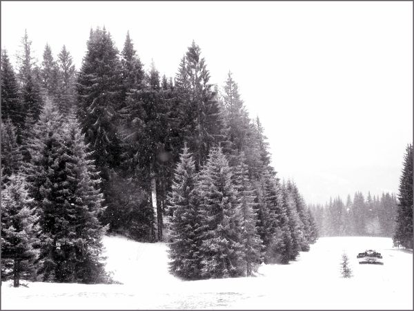 12_04_10_neige.jpeg