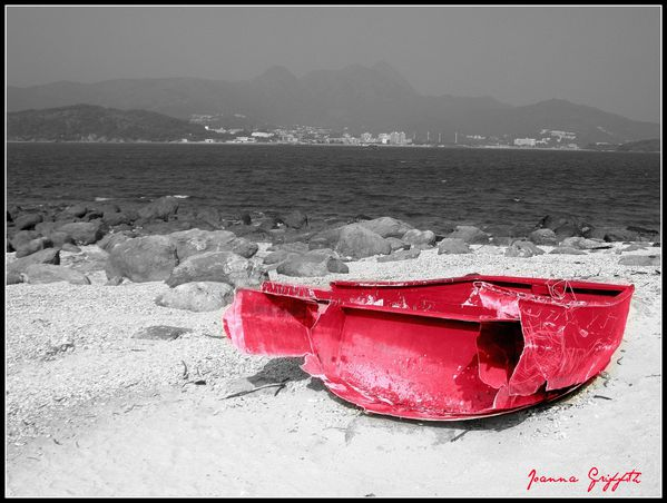 Red-Boat---competition.jpg