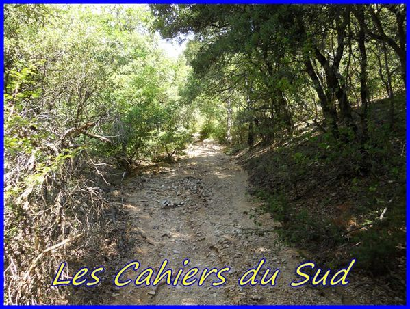 cahiers du sudDSCN0979 - Copie