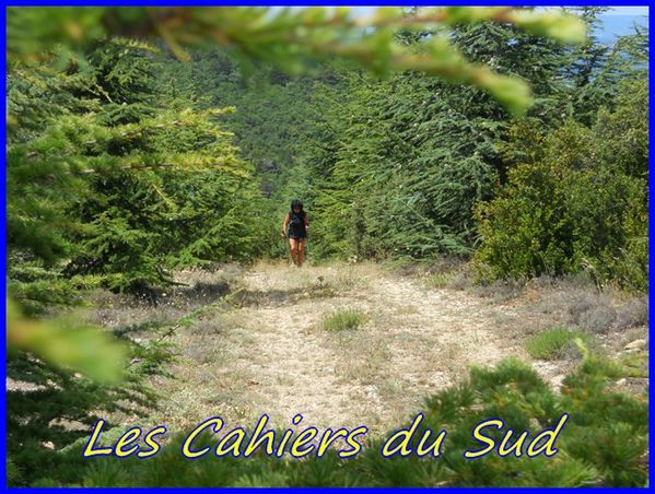 cahiers du sudDSCN1007 - Copie