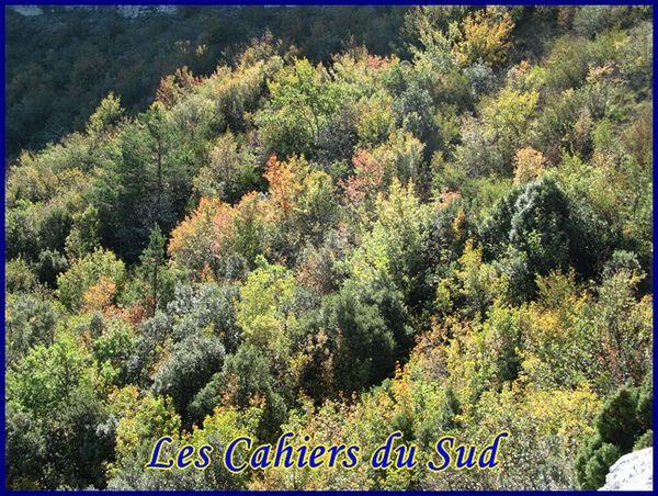 la-tour-cauvin 0247 [640x480]