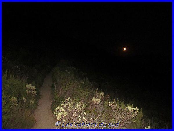 nocturne-en-garlaban 6703 [640x480]