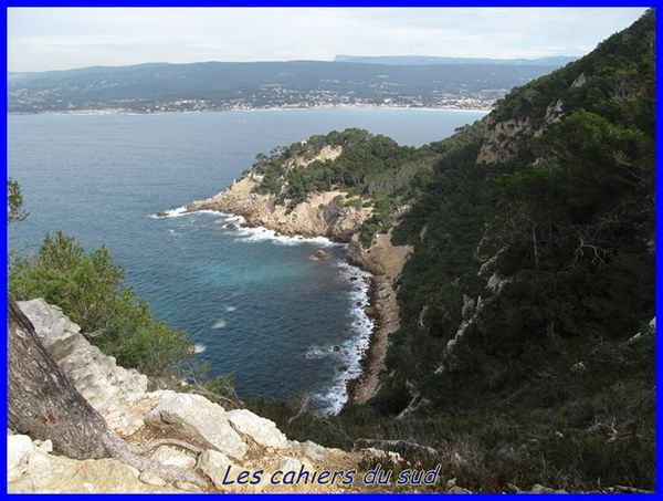 sentier-madrague-port-d-alon 3759 [640x480]