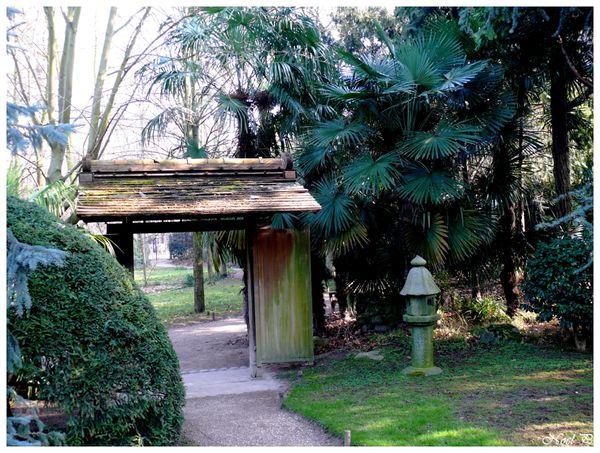 jardins Albert Kahn mars 2011 (38)