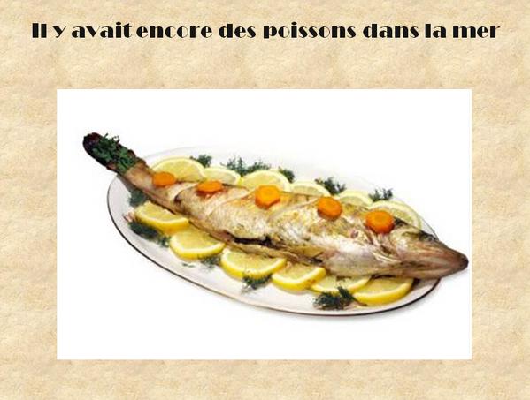 il-y-avaitt-encore-des-poissons.14.PNG