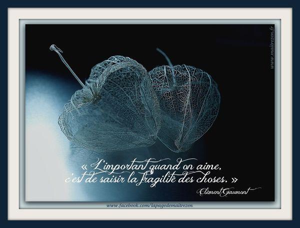 fragile-001.jpg