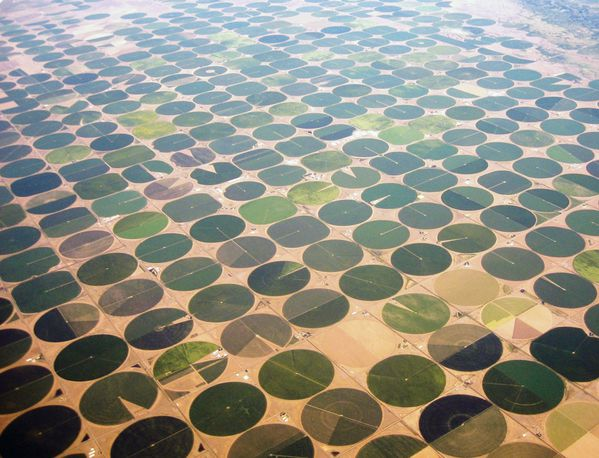 Valley-crop-circles.jpg