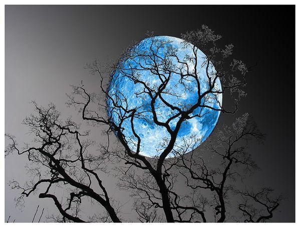 blue_moon-2.jpg