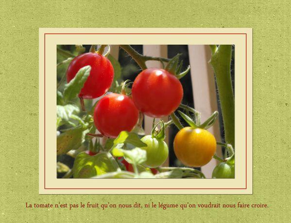 tomates-cerises-jpg.jpg