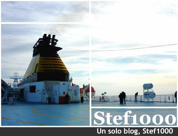 Stef1000