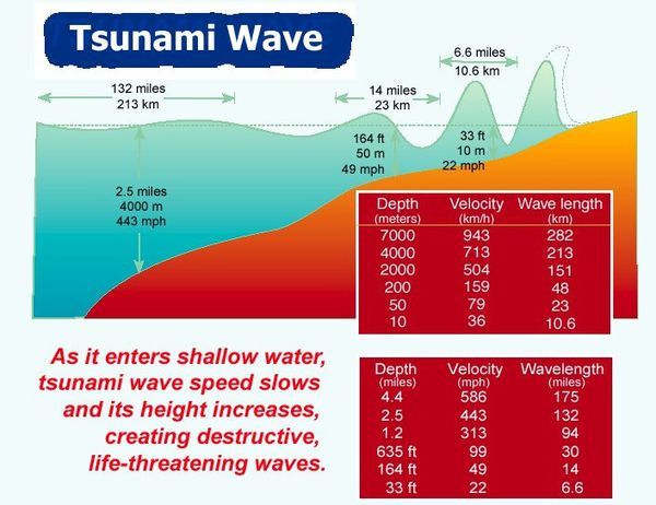 tsunami--globalsecurity.jpg