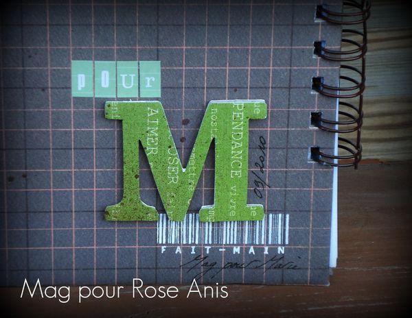 Carnet-pour-Marie-zoom-sur-M.jpg