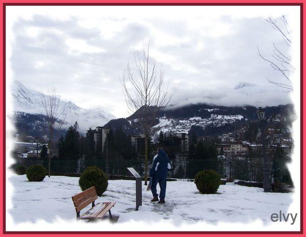 fin janvier 2012- neige et royan 409