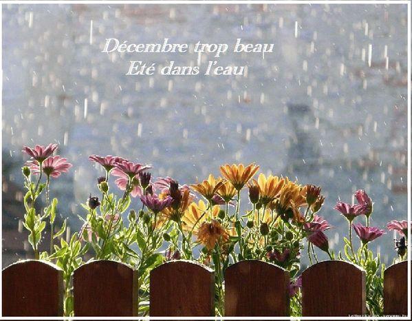 Dicton-Decembre-4.jpg