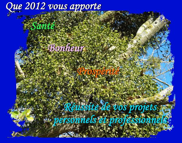 Voeux 2012-2