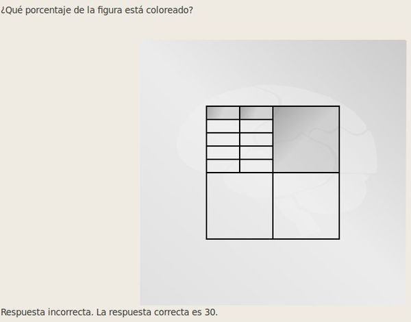 2-copia-12.jpg