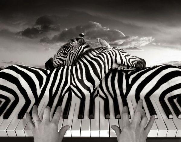thomas-berbey-Piano-Peace.jpg