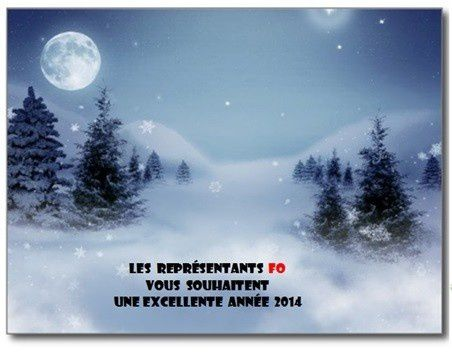 voeux-2014-blog-FO-CA56