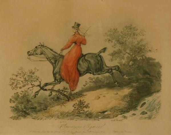 equitation-en-amzone.jpg