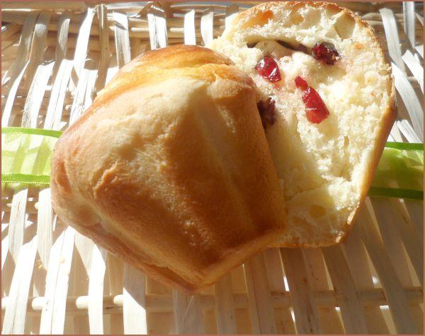 briochettes cranberry