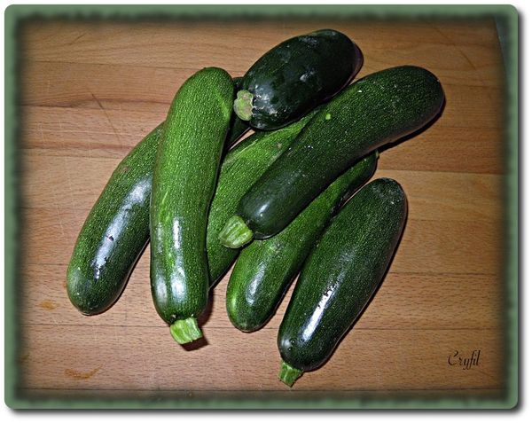 Courgettes-10-6-2013.JPG