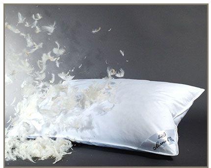 Plumes d'oreiller - www.floraxalia.com