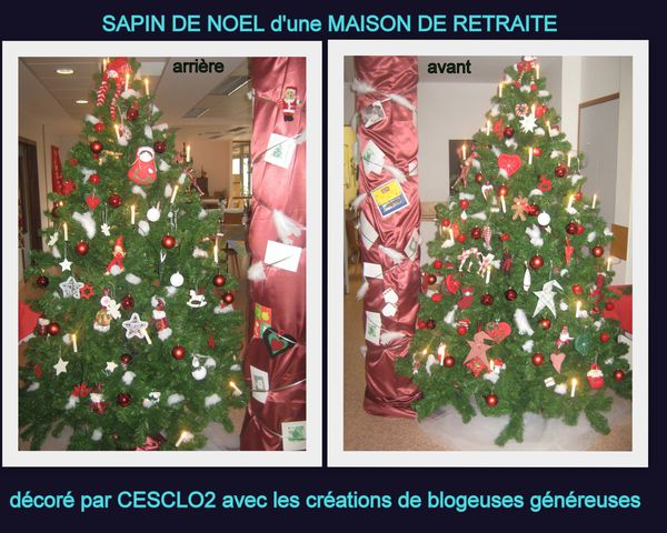 sapin des aines