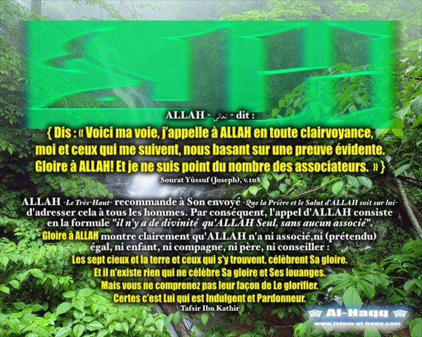 L-appel-d-ALLAH-verset-tafsir-copie-1.jpg