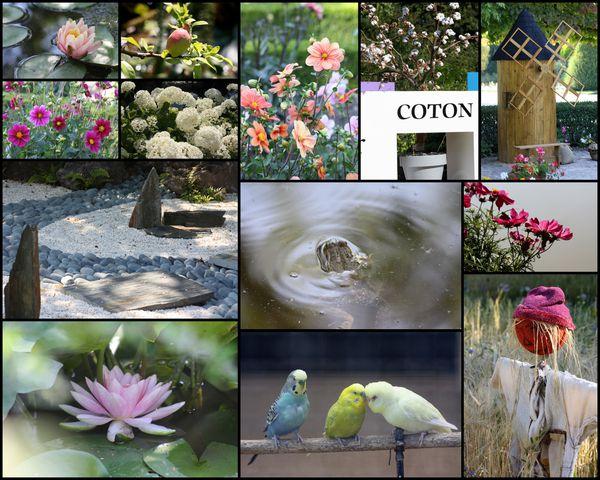 jardin-des-plantes-de-Rouen.jpg