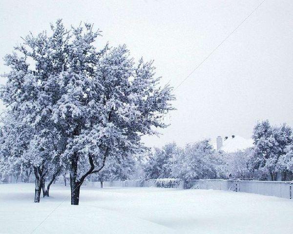 paysage-neige_19324.jpg