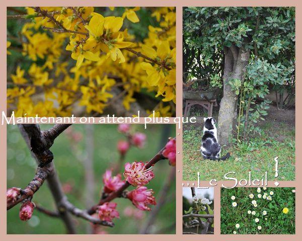 photos de mars1