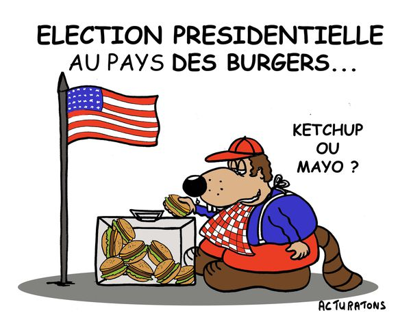 ELECTIONS-KETCHUP-copie.jpg